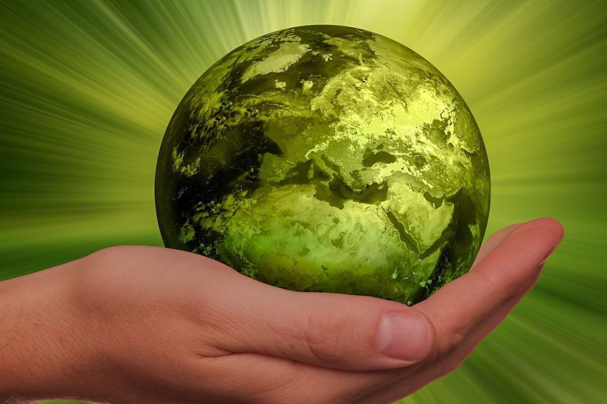 NLC Zoom Talk: Investing to save the planet