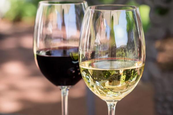 NLC Wine Tasting